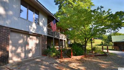 Sevierville Single Family Home For Sale: 1945 Valley Woods