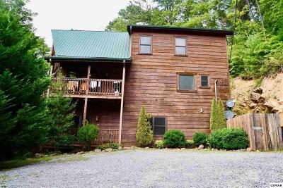 Sevierville TN Single Family Home For Sale: $549,000