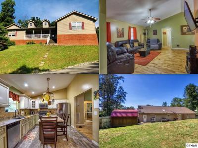 Kodak Single Family Home For Sale: 631 Rockhouse