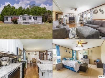 Mobile Home For Sale: 737 Big Rock Ln