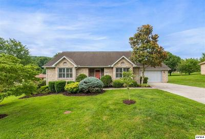 Single Family Home For Sale: 3532 Greywolfe Dr
