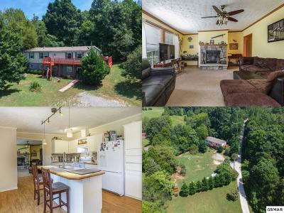Single Family Home For Sale: 1641 Greenwell Dr