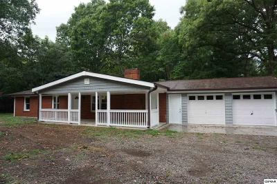 Sevierville Single Family Home For Sale: 4575 Douglas Dam
