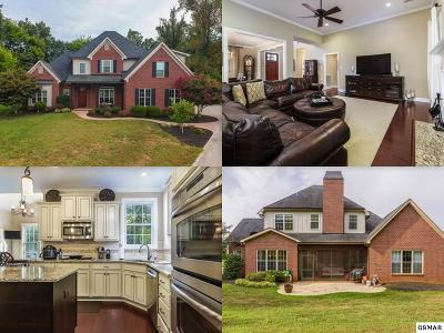 Knox County Single Family Home For Sale: 1100 Potterstone Dr.