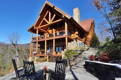 Gatlinburg Single Family Home For Sale: 808 Pinnacle Vista Rd
