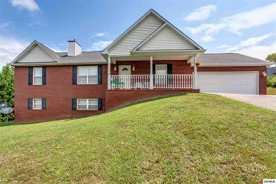 Sevierville Single Family Home For Sale: 1845 Big Buck Ln