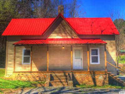 Sevierville Single Family Home For Sale: 2704 Wears Valley Road