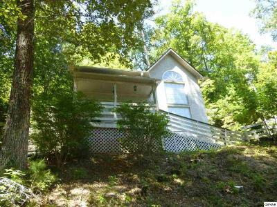 Gatlinburg TN Single Family Home For Sale: $165,000