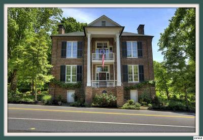 Dandridge Single Family Home For Sale: 155 E Meeting St.
