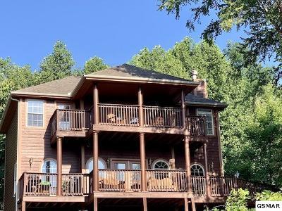 Gatlinburg Single Family Home For Sale: 909 Black Wolf Way
