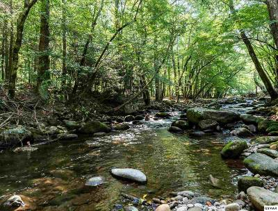 Mountain View Homes for Sale in Great Smoky Mountains, TN