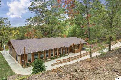 Sevierville Single Family Home For Sale: 1163 Pine Mountain Rd