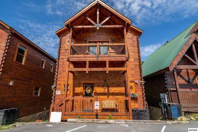 Gatlinburg Single Family Home For Sale: 1255 Bear Cub Way