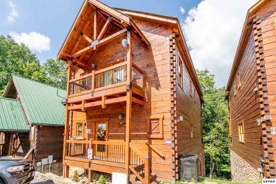 Gatlinburg Single Family Home For Sale: 1253 Bear Cub Way