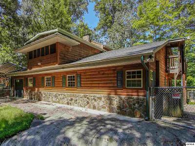 Dandridge Single Family Home For Sale: 1082 Beechwood Drive