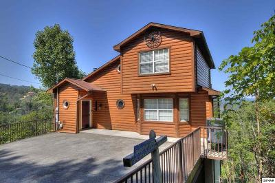 Gatlinburg Single Family Home For Sale: 943 Crooked Ridge Road