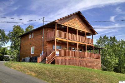 Sevierville Single Family Home For Sale: 2049 Oakmont Drive