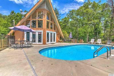 Gatlinburg Single Family Home For Sale: 1176 Tanrac Trl