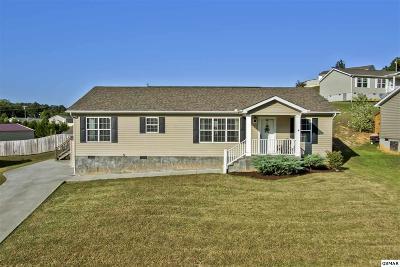 Dandridge Single Family Home For Sale: 1191 Case View Rd