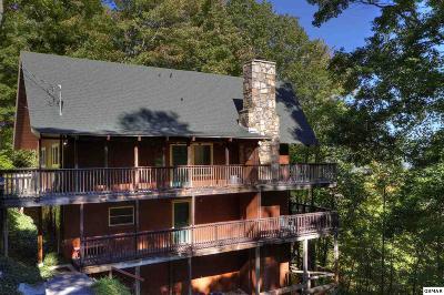 Gatlinburg Single Family Home For Sale: 1571 Zermatt Drive