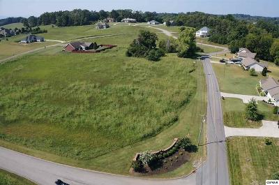 Residential Lots & Land For Sale: 602 Majestic Mtn Blvd