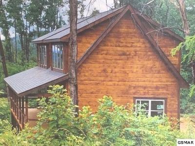 Gatlinburg Single Family Home For Sale: 834 Pine Top Lane