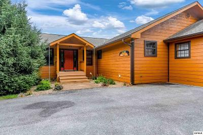 Sevier County Single Family Home For Sale: 615 Rainbow Rd