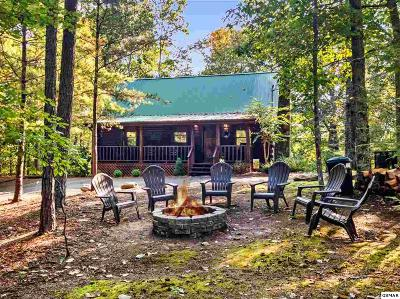 Sevierville Single Family Home For Sale: 2308 Hidden Mountain Rd