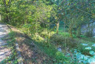 Residential Lots & Land For Sale: Parcel 031.01 Boogertown Rd