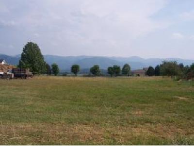 Greene County Residential Lots & Land For Sale: LOT 34 Old Stage Rd