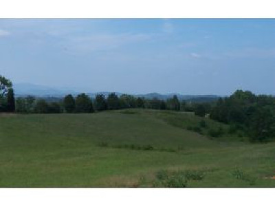 Greene County Residential Lots & Land For Sale: Lot 49 Stone Dam Rd.