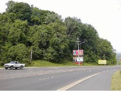 Johnson City Residential Lots & Land For Sale: 3807 North Roan Street