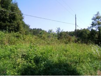 Greene County Residential Lots & Land For Sale: LOT 4 Poplar Springs Rd