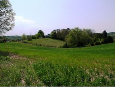 Greene County Residential Lots & Land For Sale: Lot 8 Pates Hill Rd.