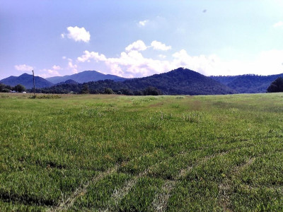 Greene County Residential Lots & Land For Sale: Kitchen Branch Rd
