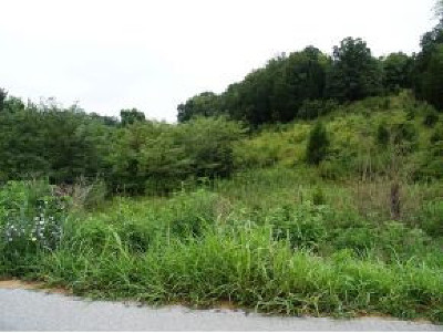 Greene County Residential Lots & Land For Sale: Lot 1 Roaring Fork Rd