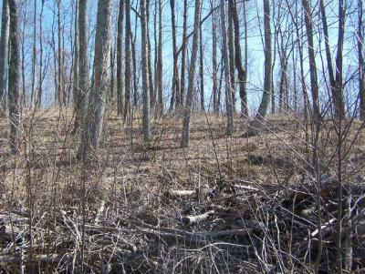 Butler Residential Lots & Land For Sale: Lot 10 Imperial Ridge