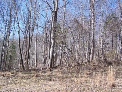 Butler Residential Lots & Land For Sale: Lot 12 Imperial Ridge