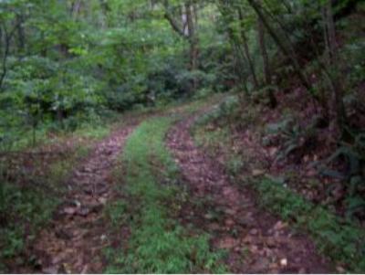 Butler Residential Lots & Land For Sale: Roan Creek Road