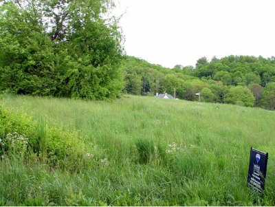 Johnson City Residential Lots & Land For Sale: Lot 5 Carroll Creek Road
