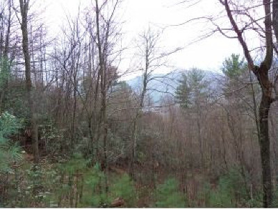 Butler Residential Lots & Land For Sale: TBD Rd Campbell Rd