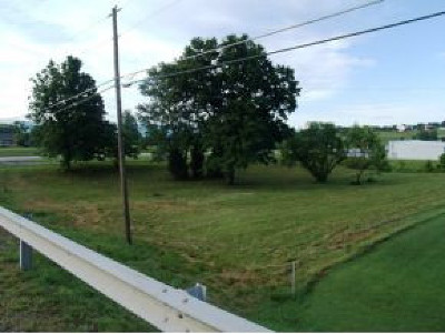 Greene County Residential Lots & Land For Sale: E. Andrew Johnson Hwy