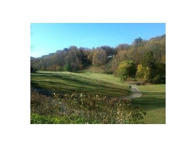 Unicoi Residential Lots & Land For Sale: TBD Lakeview