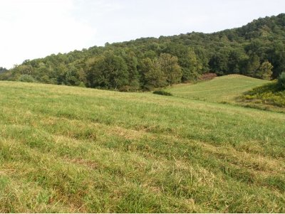 Butler Residential Lots & Land For Sale: 250 Paul Snyder Road