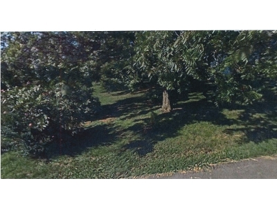 Johnson City Residential Lots & Land For Sale: 223 Browns Road