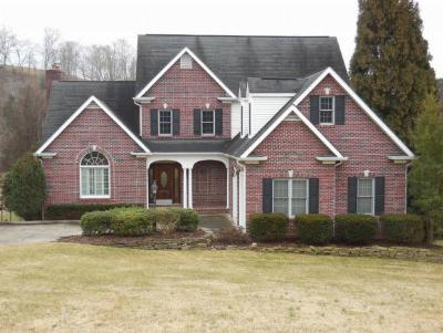 Johnson City Single Family Home For Sale: 129 Lake Harbor Drive
