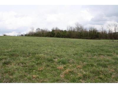 Piney Flats Residential Lots & Land For Sale: 239 Lake Vista Circle
