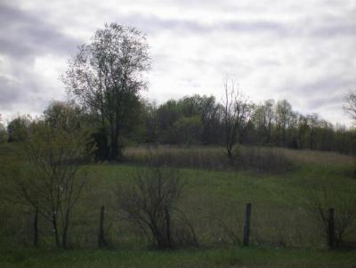 Residential Lots & Land For Sale: Hwy 421