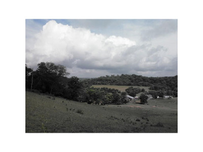 Greene County Residential Lots & Land For Sale: Old Knoxville Hwy
