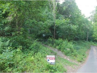 Piney Flats Residential Lots & Land For Sale: TBD Blue Heron Lane